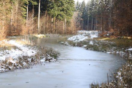 Centerparcs rivière