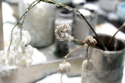 Biennale de Lyon - Fagor - Bianca Bondi - Cusine cristallisée